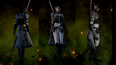 Warden mage fur retexture