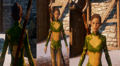 Female Elf Skyhold Outfit