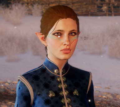 Henleigh Lavellan _The Warden Inquisitor_ Sliders