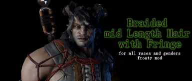 Frosty Braided mid Length Hair with Fringe - for Qunari Dwarves Elves and Humans