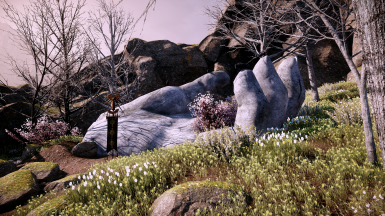 Spring in Thedas ft. Morning Dew - Season Overhaul