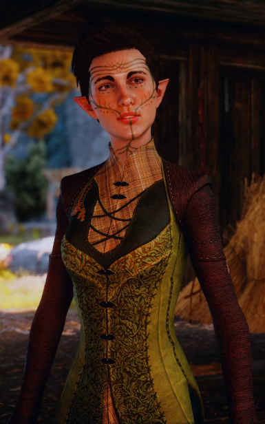 DragonAgeInquisition 2015 05 13 23 32 00 04