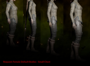 Request - Female Default Bodies - Small Chest