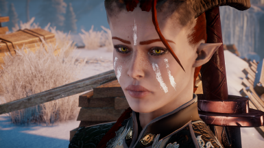 Long braid for male and female qunari at Dragon Age ...