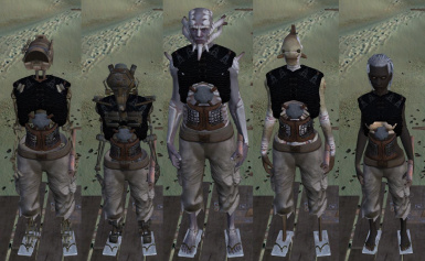 Shirts For All at Kenshi Nexus - Mods and Community