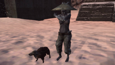 Thief with a wolf