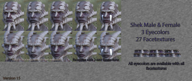 Faces Plus at Kenshi Nexus - Mods and Community