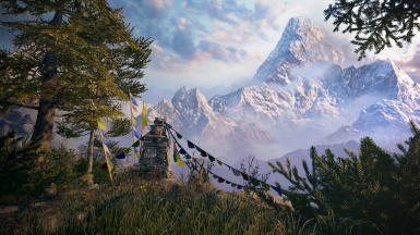 Farcry 4 Forest 1 and 2 (Map)