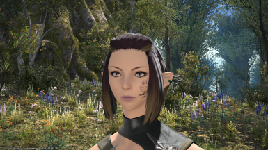 manually downloading files into ffxiv textools
