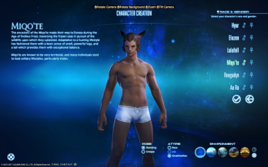 Male Nipples of Eorzea by Ccakeyy at Final Fantasy XIV Nexus