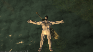 Better Roegadyn at Final Fantasy XIV Nexus - Mods and community