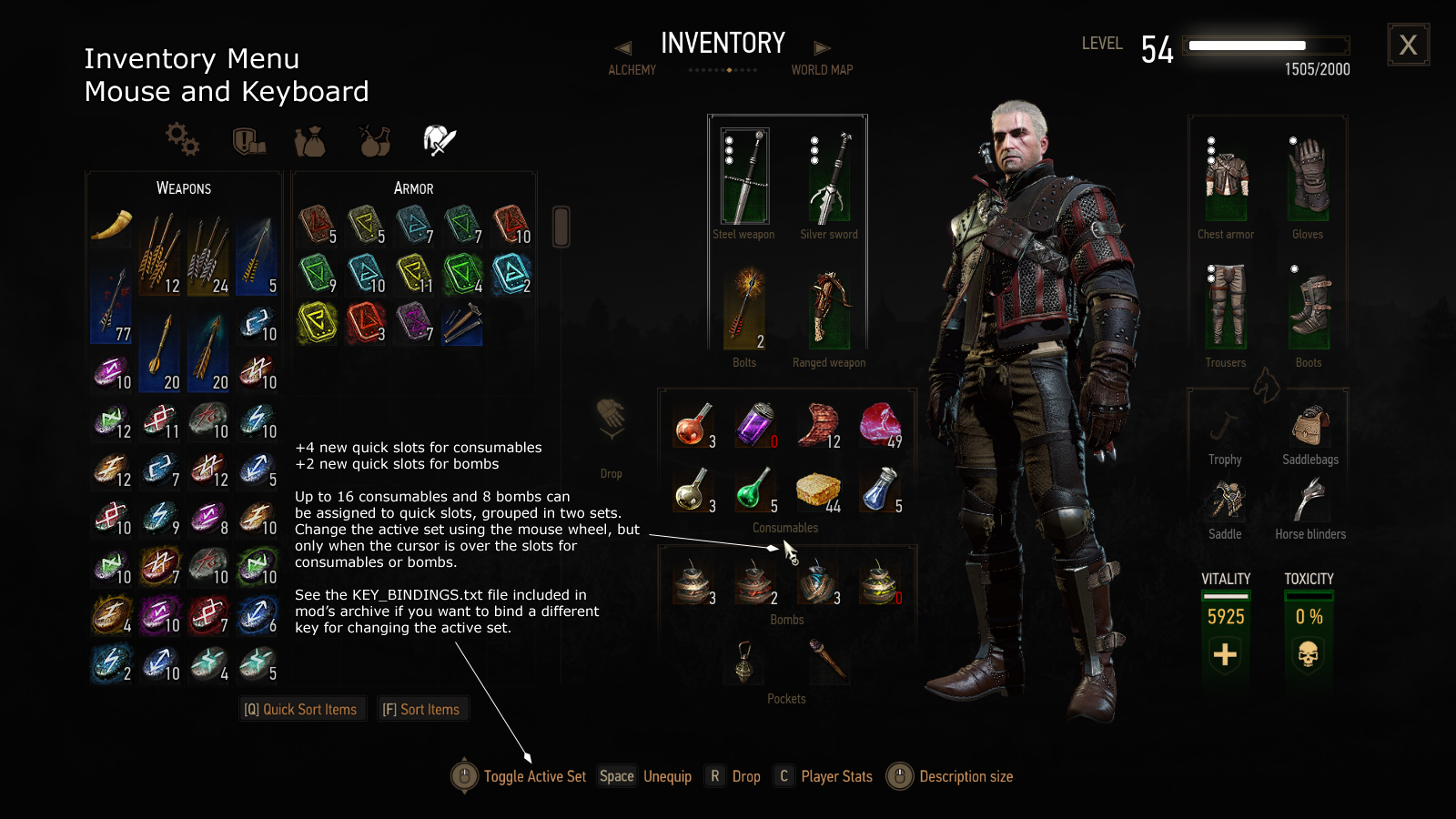 the witcher 3 slots