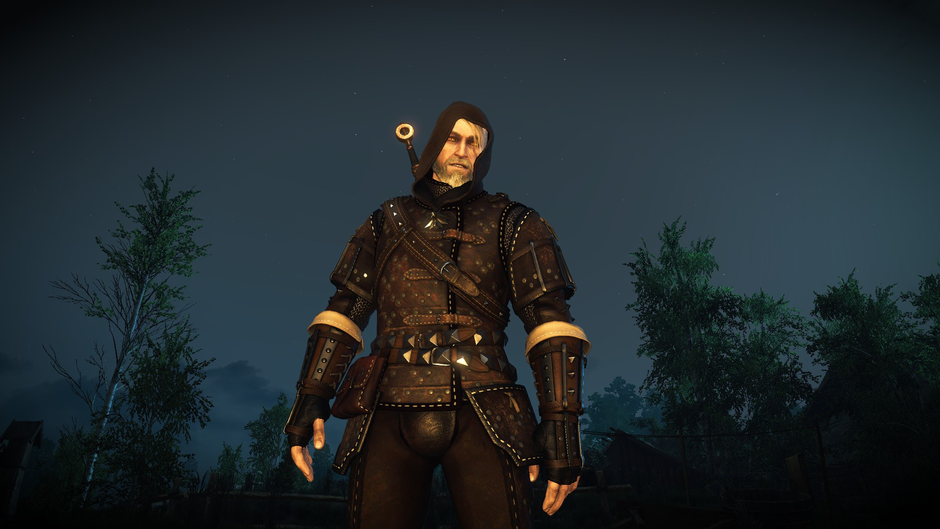 The Witcher  Cat Gear