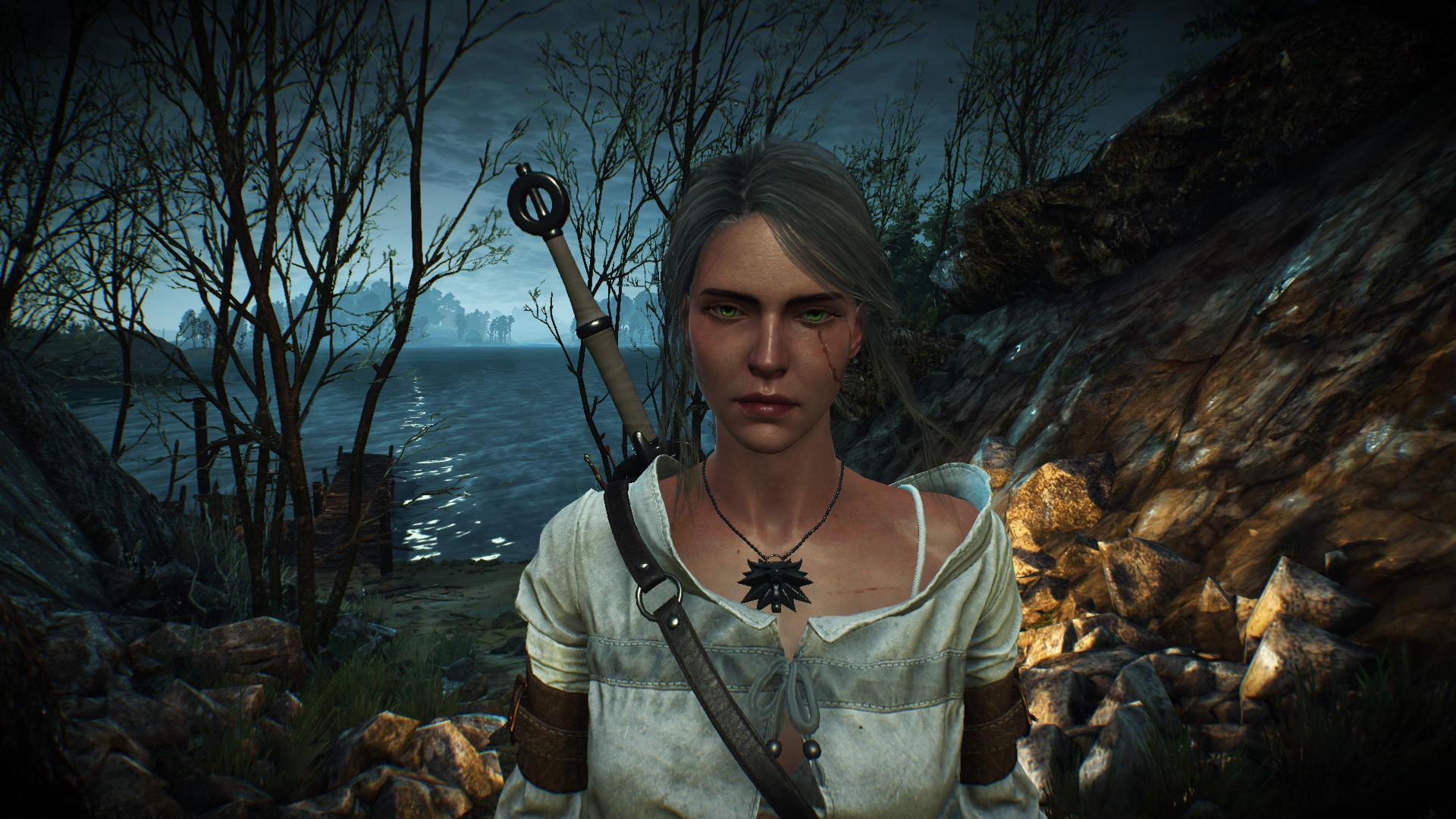 Amateur Porn Custome The Witcher showing porn images for ciri wolf porn | www.porndaa