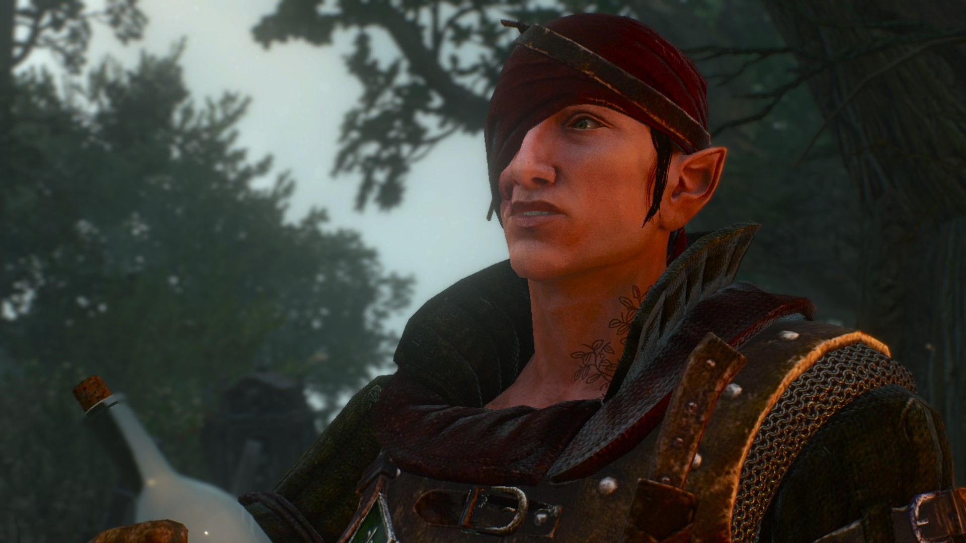 2 Or 3 Things I Know: Swap Characters To Iorveth (or Roche) At The Witcher 3