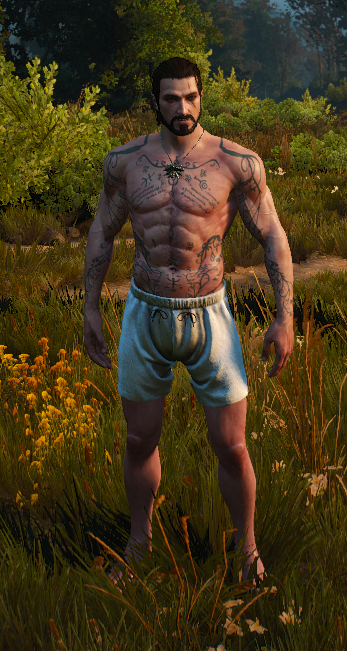 Witcher 3 Tattoo: Avallac'h Tattoos For Geralt At The Witcher 3 Nexus