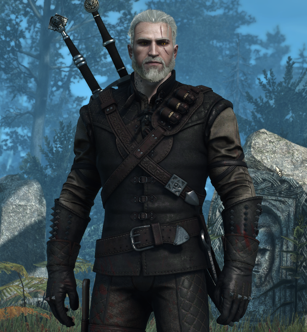 witcher 3 quotes