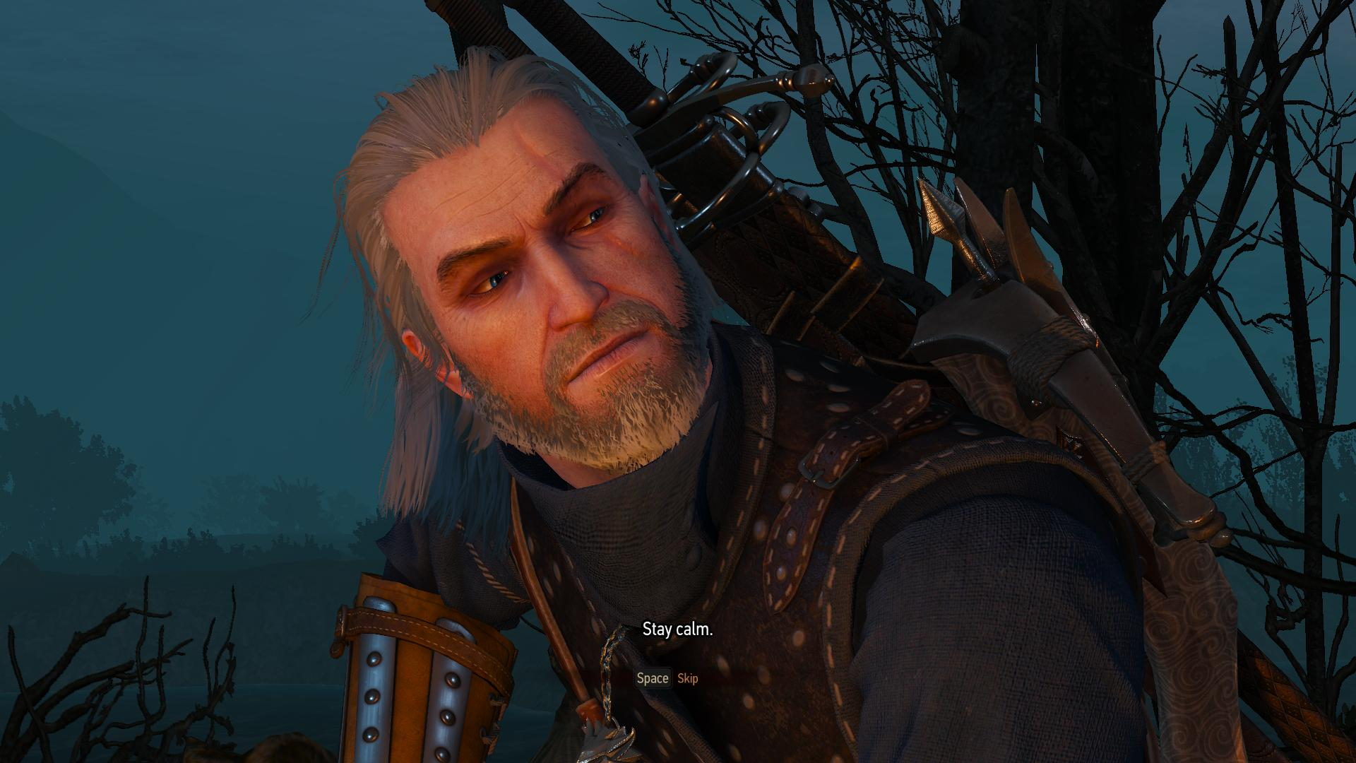 Geralt Less Visible Face And Body Scars At The Witcher 3