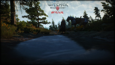 TheWitcher3HDRP 4 8 WaterPuddles01Original