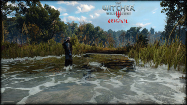 TheWitcher3HDRP 4 8 Rivers Streams02Original