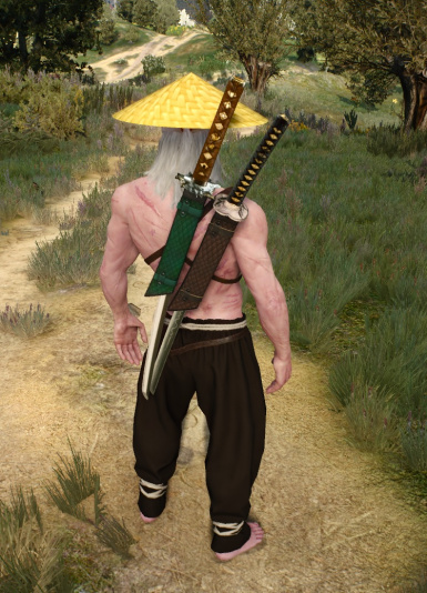 Witcher Katanas DLC V1.03 and YinYang Pendant