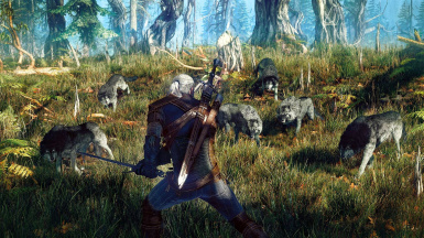 TheWitcher3 VGX