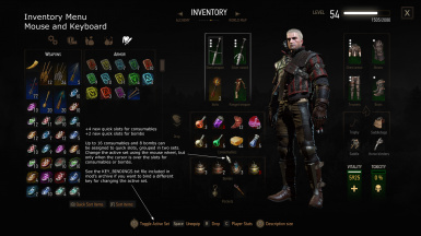 More inventory slots defiance