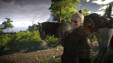 Skellige Ice Breath