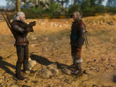Geralt animation and different camera test
