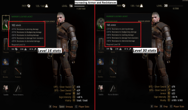 Leveling Kaer Morhen Armor and Warriors Leather Jacket (Blood and Wine Ready)