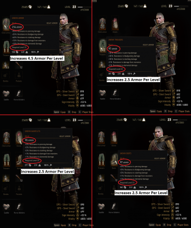 Leveling DLC Temerian Undvik Nilfgaardian and Oathbreaker Armors (Blood and Wine Ready)