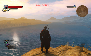 Witcher 3 Wider FOV 1.21