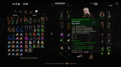 Leveling Grandmaster and Viper Witcher Gear for v1 22 at The Witcher