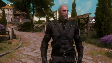 Manticore Armor Recolor at The Witcher 3 Nexus - Mods and