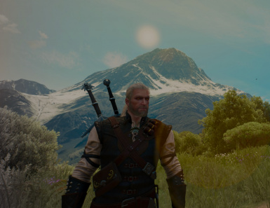 The Witcher III Complete Save