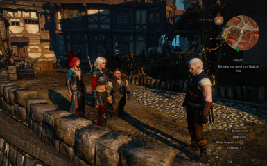 Spawn 3 Companions mod at The Witcher 3 Nexus - Mods and