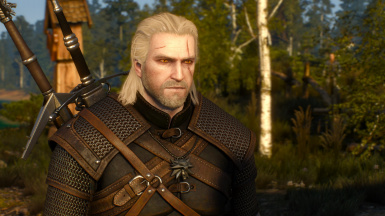 Geralt Skin Enhanced
