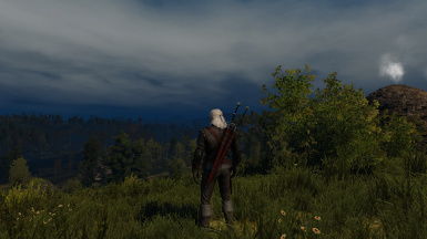 Toussaint Grass in Velen and Novigrad