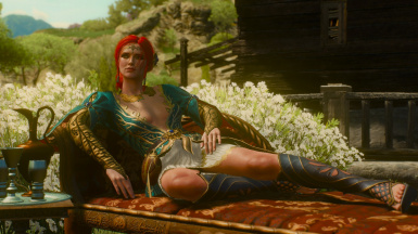 fix for Triss alternate look DLC in Blood and Wine at The