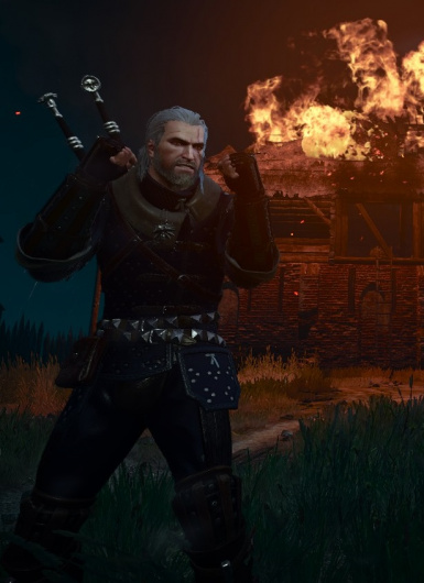 Don't Mess With The Witcher