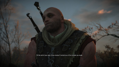 NPC Witcher Sword and Armor Replacers