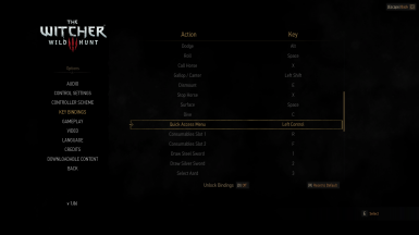The Witcher 2 Input Configuration
