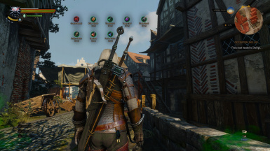Witcher 2 Potion Length