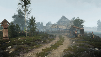 Fog in White Orchard