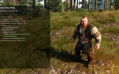 sbui animation mode pose selection actor cam
