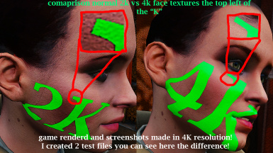2K normal face vs 4K texture - This is a test image as written in the description