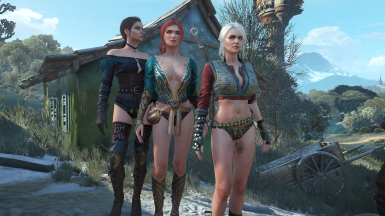 Alternative look for Ciri Yennefer and Triss at The Witcher