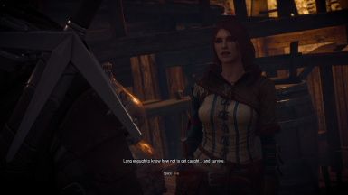 Triss new look and Triss Witcher 2 outfit