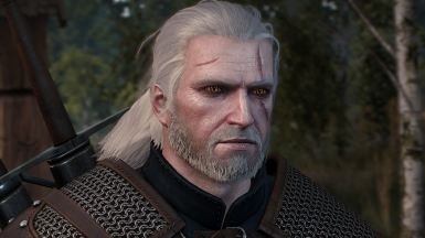 Witchers Eyes Lore Friendly At The Witcher 3 Nexus Mods