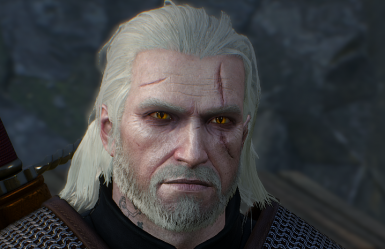 The Butcher of Blaviken Lore-Friendly Geralt